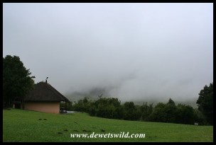 Mist settling in at Thendele as we depart for Giant's Castle