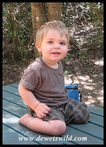 1 Year old: November 2010. Time for a picnic in the iSimangaliso Wetland Park.
