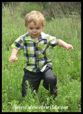 1 Year old: December 2010. Chasing butterflies through a field on the North West Province farm where Grandpa grew up.