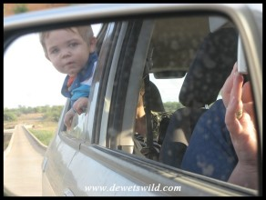 1 Year old: April 2011. Looking for the Big 5 in the Kruger National Park.