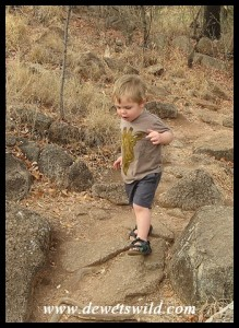 2 Years old: October 2011. Short, unsteady legs over big rocks at Pilanesberg National Park.