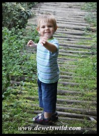 2 Years old: April 2012. Happiness in a forest at Royal Natal.
