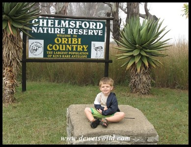 3 Years old: March 2013. At the entrance to Chelmsford Nature Reserve.