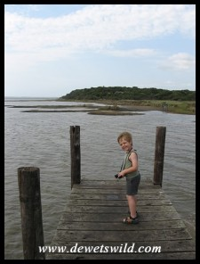 5 Years old: December 2014. Chancing being blown off the jetty at Charter's Creek in the iSimangaliso Wetland Park.