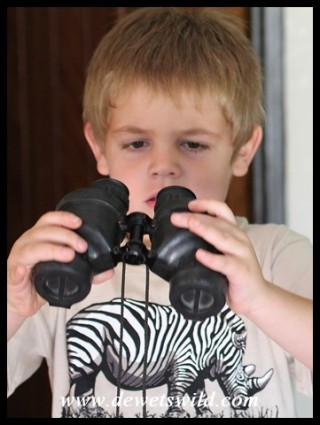 5 Years old: December 2014. Figuring out Grandpa's binoculars