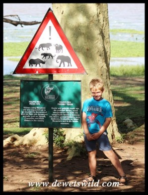 7 Years old: March 2017. Nsumo Picnic Site, uMkhuze Game Reserve, iSimangaliso Wetland Park