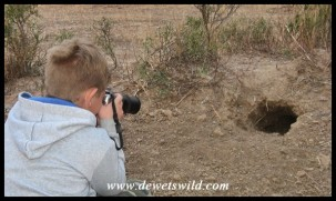 8 Years old: September 2017. Photographing an animal burrow at Nylsvley Nature Reserve.
