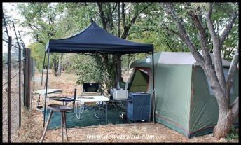 Camping at Shingwedzi, Kruger National Park, June 2019