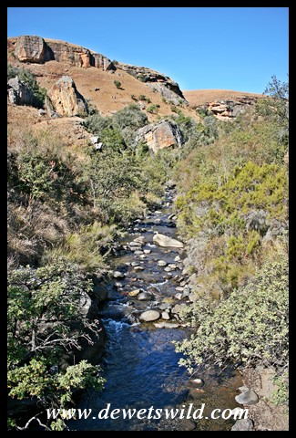Scenic vistas along the Bushmans River