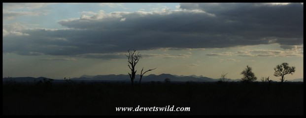 A view towards the mountains of Malelane on a clear evening