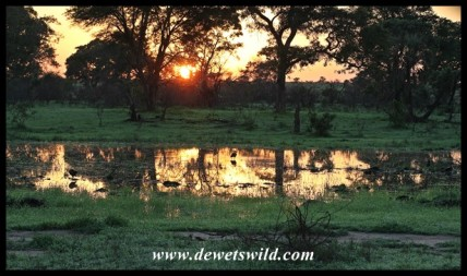 Sunrise over a waterhole on the Sweni road