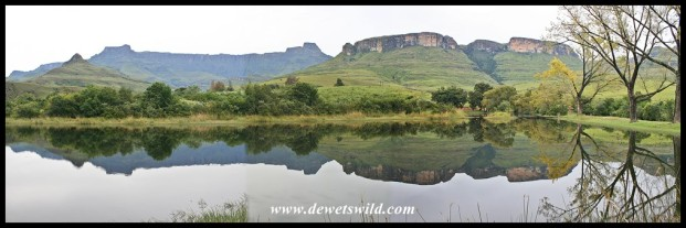 The trout dam at Mahai, with Dooley Mountain and the Drakensberg's Amphitheatre forming the backdrop