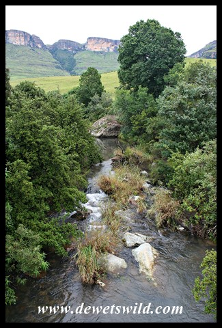 The Mahai Stream from the Visitor Centre, with Dooley Mountain and Tiger Falls in the background