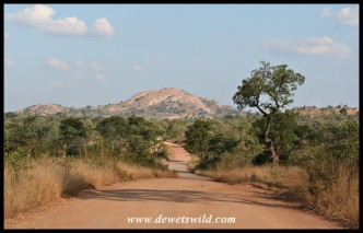 Rocky outcrops are a feature of the Pretoriuskop area - this hill is called Shabeni
