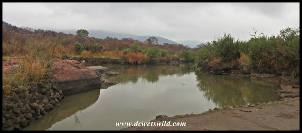 Crossing the Mankwe stream along Tshepe Drive
