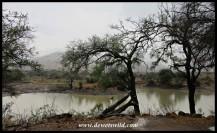 Tilodi Dam