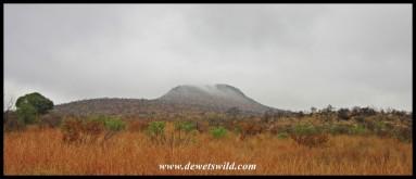 Scenery along Tshepe Drive