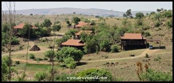 The log cabins overlook the lion camp at the Rhino & Lion Nature Reserve