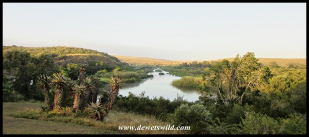 Breede River at sunrise
