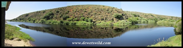 Breede River panorama