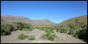 Karoo National Park scenery