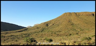 Karoo National Park, 16 December 2020