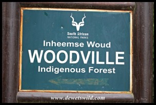 Woodville Forest