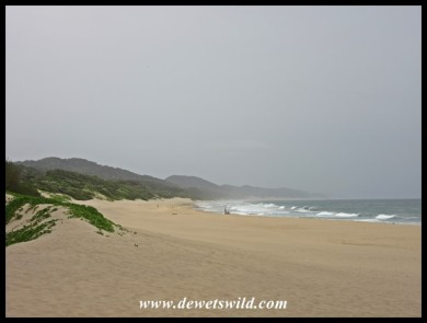 Heavy skies above the beach at Cape Vidal