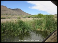 Bird Hide at Karoo National Park
