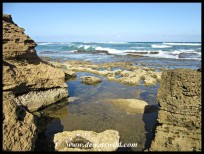 Rock pools at Mission Rocks