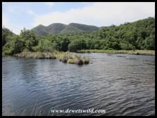 Groot River