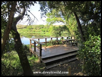 Viewing deck on the Bushbuck Trail
