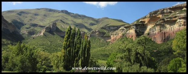 View from our cottage at Glen Reenen in the Golden Gate Highlands National Park