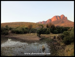 The view from the deck of unit 10 (Loerie) at Tlopi Tented Camp