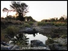 Serene pool in the Sweni stream