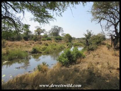Beautiful pool of water on the Sweni