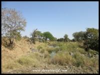 A look upstream along the Sweni
