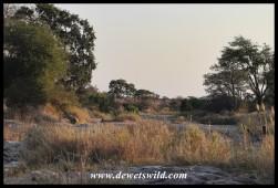 Sweni streambed